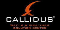 CallidusWPSC_logo